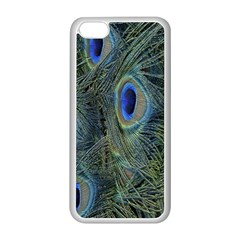 Peacock Feathers Blue Bird Nature Apple Iphone 5c Seamless Case (white)