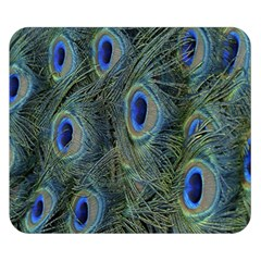 Peacock Feathers Blue Bird Nature Double Sided Flano Blanket (small)