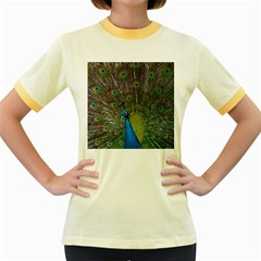 Peacock Feather Beat Rad Blue Women s Fitted Ringer T Shirts