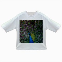 Peacock Feather Beat Rad Blue Infant/toddler T Shirts