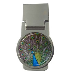 Peacock Feather Beat Rad Blue Money Clips (Round)