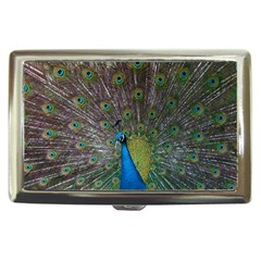 Peacock Feather Beat Rad Blue Cigarette Money Cases