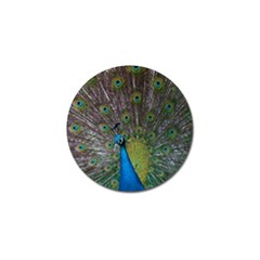 Peacock Feather Beat Rad Blue Golf Ball Marker (4 Pack)