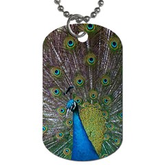 Peacock Feather Beat Rad Blue Dog Tag (Two Sides)