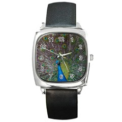 Peacock Feather Beat Rad Blue Square Metal Watch