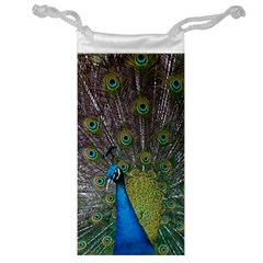 Peacock Feather Beat Rad Blue Jewelry Bag