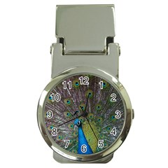 Peacock Feather Beat Rad Blue Money Clip Watches