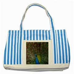 Peacock Feather Beat Rad Blue Striped Blue Tote Bag