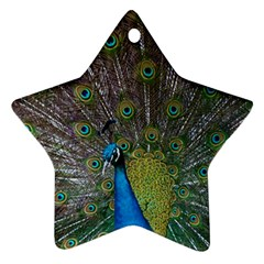 Peacock Feather Beat Rad Blue Star Ornament (two Sides)