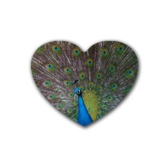 Peacock Feather Beat Rad Blue Rubber Coaster (heart)