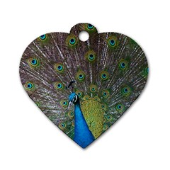Peacock Feather Beat Rad Blue Dog Tag Heart (one Side)