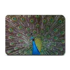 Peacock Feather Beat Rad Blue Small Doormat