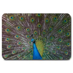Peacock Feather Beat Rad Blue Large Doormat