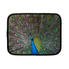 Peacock Feather Beat Rad Blue Netbook Case (small)