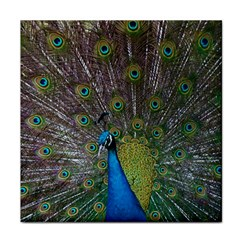 Peacock Feather Beat Rad Blue Face Towel