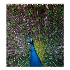 Peacock Feather Beat Rad Blue Shower Curtain 66  X 72  (large)