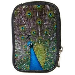 Peacock Feather Beat Rad Blue Compact Camera Cases
