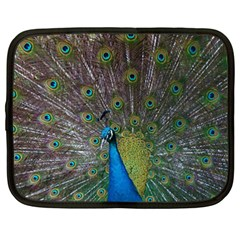 Peacock Feather Beat Rad Blue Netbook Case (xxl)