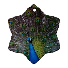 Peacock Feather Beat Rad Blue Ornament (snowflake)
