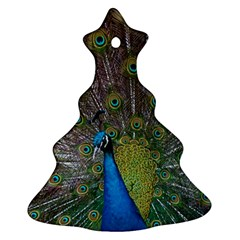 Peacock Feather Beat Rad Blue Christmas Tree Ornament (two Sides)
