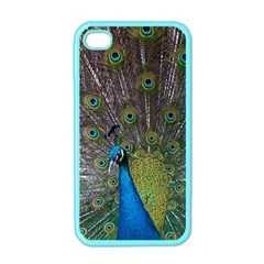 Peacock Feather Beat Rad Blue Apple Iphone 4 Case (color)