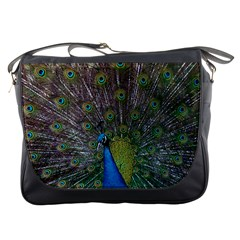 Peacock Feather Beat Rad Blue Messenger Bags