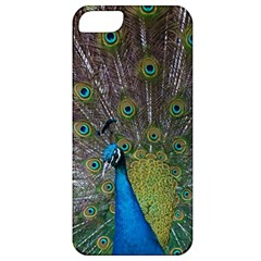 Peacock Feather Beat Rad Blue Apple Iphone 5 Classic Hardshell Case