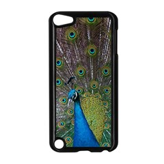 Peacock Feather Beat Rad Blue Apple Ipod Touch 5 Case (black)