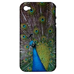 Peacock Feather Beat Rad Blue Apple Iphone 4/4s Hardshell Case (pc+silicone)