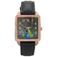 Peacock Feather Beat Rad Blue Rose Gold Leather Watch
