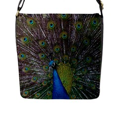 Peacock Feather Beat Rad Blue Flap Messenger Bag (l)