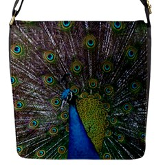 Peacock Feather Beat Rad Blue Flap Messenger Bag (s)