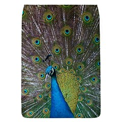 Peacock Feather Beat Rad Blue Flap Covers (s)
