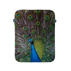 Peacock Feather Beat Rad Blue Apple iPad 2/3/4 Protective Soft Cases