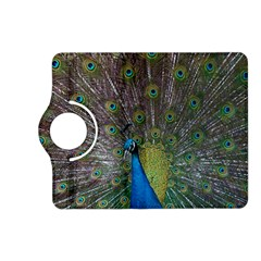 Peacock Feather Beat Rad Blue Kindle Fire Hd (2013) Flip 360 Case