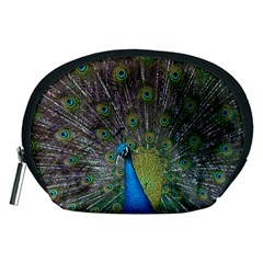 Peacock Feather Beat Rad Blue Accessory Pouches (medium)