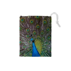 Peacock Feather Beat Rad Blue Drawstring Pouches (small)