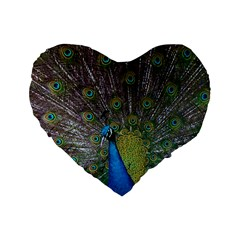 Peacock Feather Beat Rad Blue Standard 16  Premium Flano Heart Shape Cushions