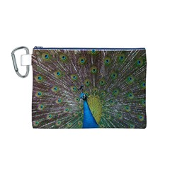 Peacock Feather Beat Rad Blue Canvas Cosmetic Bag (m)