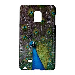 Peacock Feather Beat Rad Blue Galaxy Note Edge