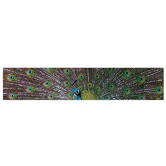 Peacock Feather Beat Rad Blue Flano Scarf (small)