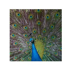 Peacock Feather Beat Rad Blue Small Satin Scarf (square)