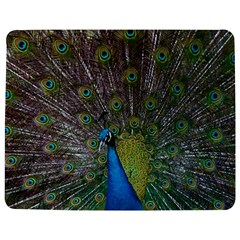 Peacock Feather Beat Rad Blue Jigsaw Puzzle Photo Stand (rectangular)