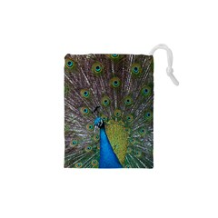 Peacock Feather Beat Rad Blue Drawstring Pouches (xs)