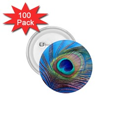 Peacock Feather Blue Green Bright 1 75  Buttons (100 Pack)