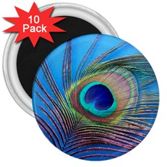 Peacock Feather Blue Green Bright 3  Magnets (10 Pack)