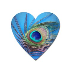 Peacock Feather Blue Green Bright Heart Magnet