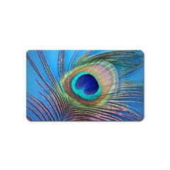 Peacock Feather Blue Green Bright Magnet (name Card)