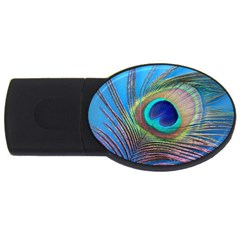 Peacock Feather Blue Green Bright USB Flash Drive Oval (1 GB)