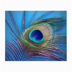 Peacock Feather Blue Green Bright Small Glasses Cloth